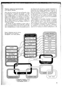ciencianueva9-11-638